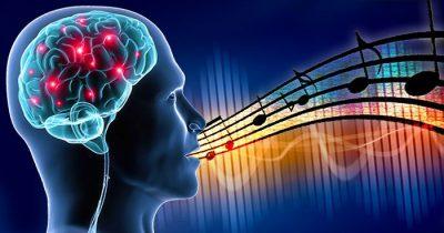 Neuroscience Singing Feature